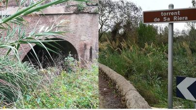 Alarma por el abandono del torrente de Sa Riera a la entrada de Palma