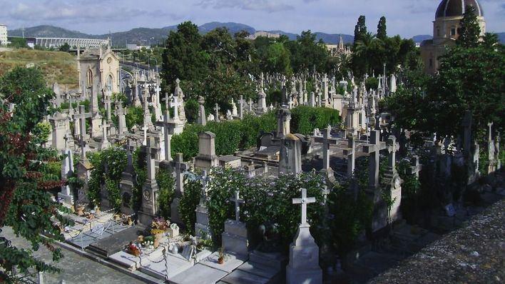 Policía Local de Palma recomienda no ir en coche al cementerio el día 1