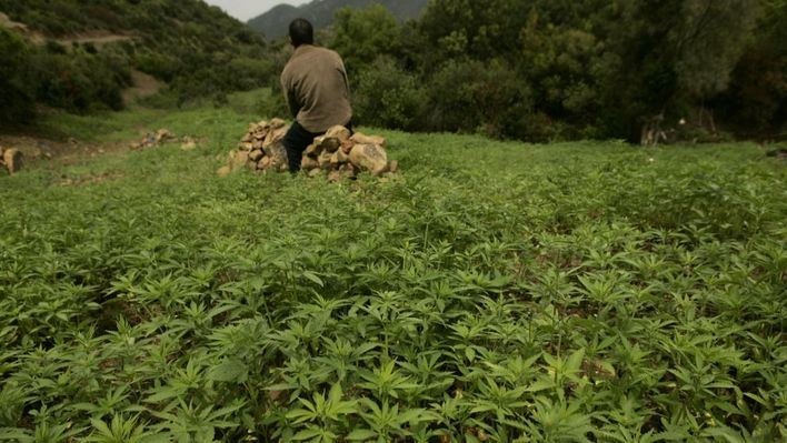 Los medicamentos con cannabis ya pueden recetarse en Reino Unido