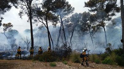 Los incendios han quemado 27,2 hectáreas en Baleares en diez meses