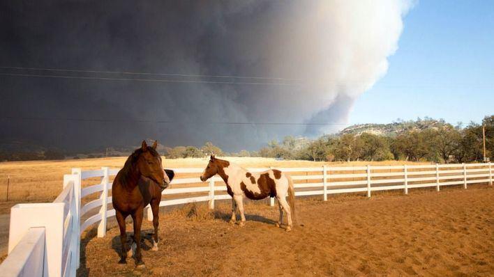 30.000 evacuados por un devastador incendio en el norte de California
