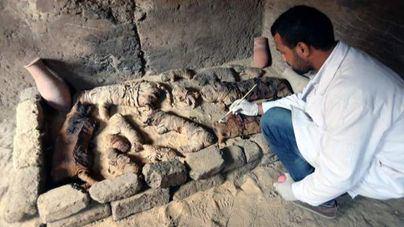 Un arqueólogo limpia momias de animales halladas en Saqqara, Egipto