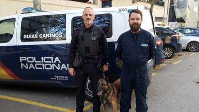 Un policía estonio participa en Palma en un programa de intercambio de buenas prácticas