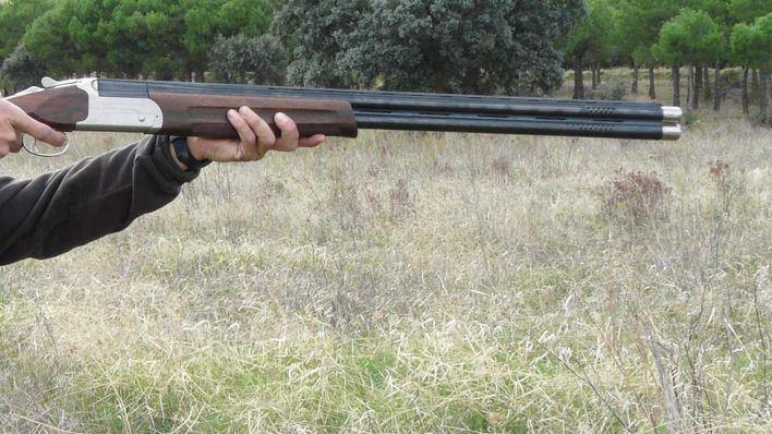 Piden un año y medio de cárcel para el acusado de matar de un tiro a una perra de caza en Llucmajor