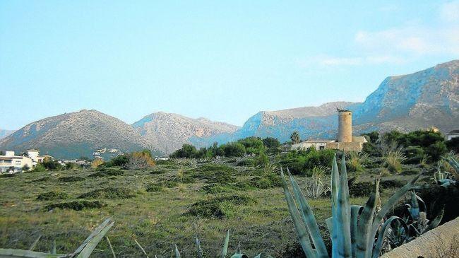 El GOB pide a Artà la protección íntegra del Molí den Regalat