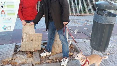 """Camp Redó """"al límite"""": """"Señor Noguera, los vecinos no pueden ni caminar por las calles"""""""
