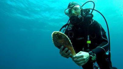 Baleares ya dispone de 63.000 hectáreas dentro de reservas marinas