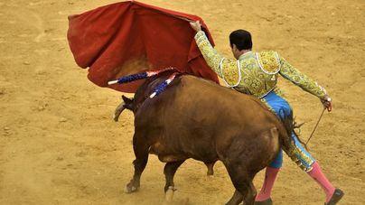 Varapalo del Constitucional al Govern: se podrá lidiar y matar toros