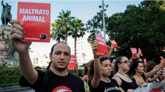 """Los animalistas cargan contra el Constitucional: """"la gente poderosa está con la tauromaquia"""""""