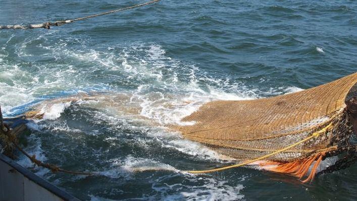 Paralizan hasta final de marzo la pesca de arrastre en Formentera