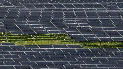La Asociación en Defensa de la Marina de Llucmajor pide parar el megaparque fotovoltaico