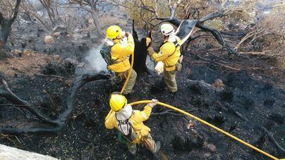El Ibanat crea bolsines en cada isla para trabajadores forestales y vigilantes