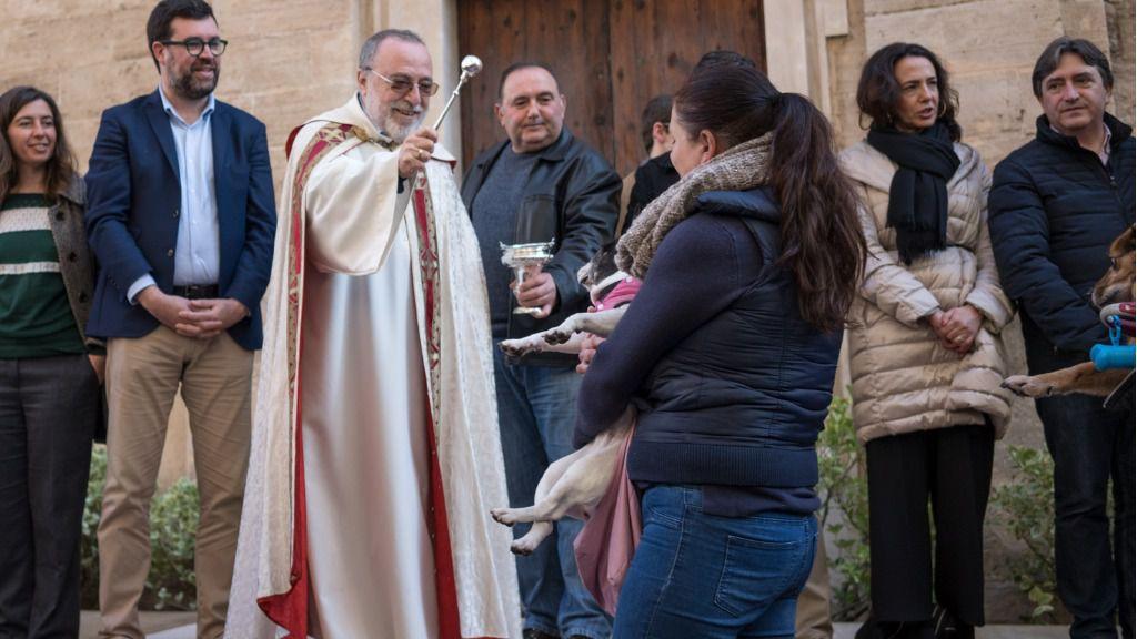 Palma celebra unas concurridas 'Beneïdes' de Sant Antoni