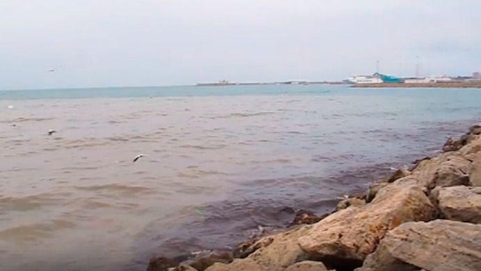 Greenpeace arremete contra Medi Ambient por el vertido en aguas de Palma