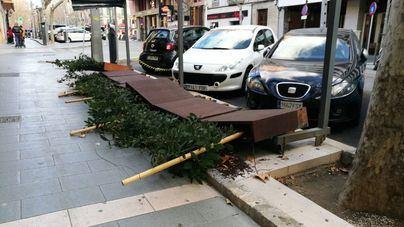 Bombers de Palma registran 13 emergencias debido al viento