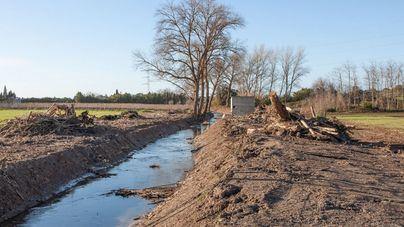 El GOB acusa al Govern de arrasar el espacio protegido del torrente de Na Borges