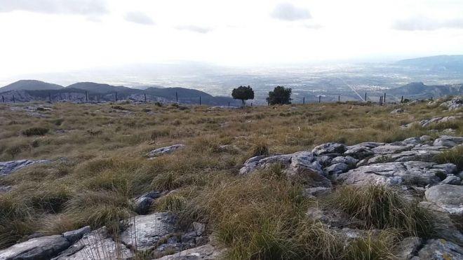 Paralizan las obras de un chalet en lo alto de la Serra d'Alfàbia denunciado por el GOB