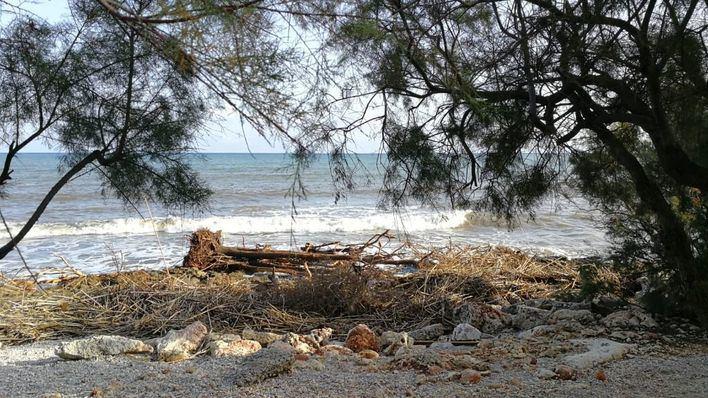 Madrid elimina trámites para acelerar la regeneración de las playas arrasadas en la torrentada