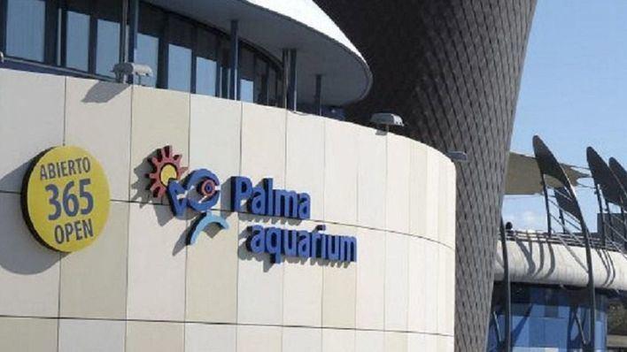 Palma Aquarium se publicita desde el mismo aeropuerto. Acciones animalistas a sus puertas han disuadido a visitantes