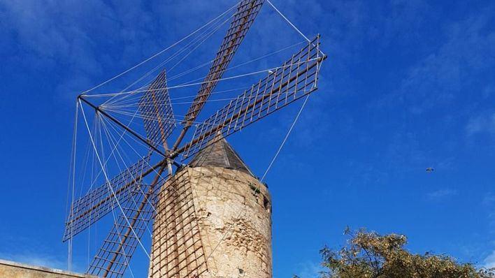 Palma apuesta por recuperar la historia de los molinos