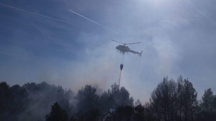 Controlado un incendio forestal en el Parc de Llevant