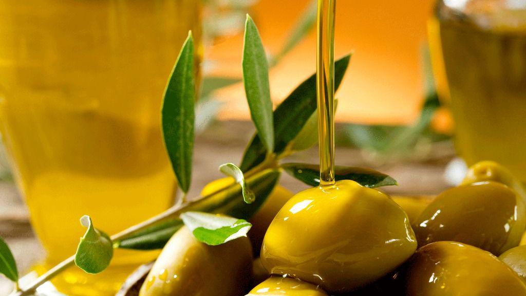 La finca de Raixa acoge la fiesta del aceite de oliva de Mallorca