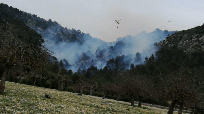 Extinguido el incendio de Son Ordines, tras quemar 9 hectáreas
