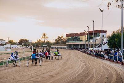 El Consell prorroga el convenio de gestión del Hipódromo de Manacor