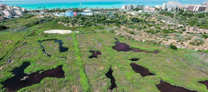 Aprobado el Plan que limita las dimensiones de grandes superficies en Mallorca