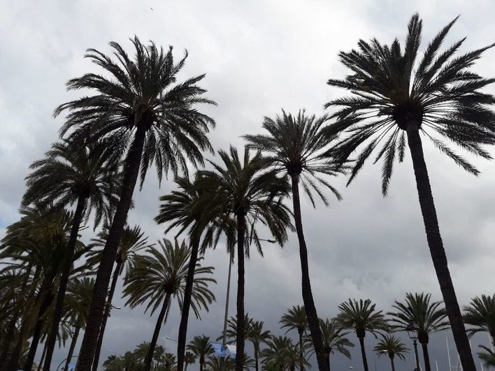 Jueves con inestabilidad, chubascos ocasionales y tormentas
