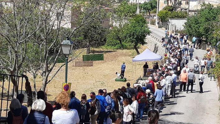 Numerosa asistencia a la vigésima edición de la Fira d'Oví Caprí de Calvià
