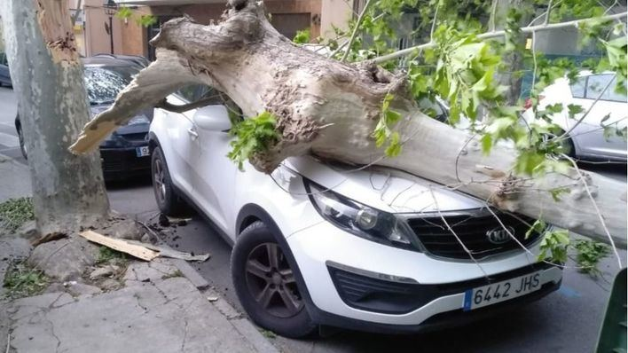 El fuerte viento reinante provoca diversos incidentes en las Islas