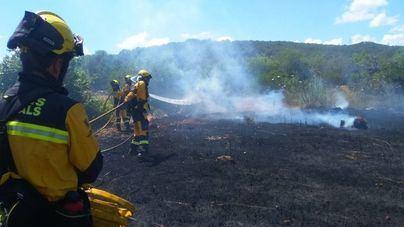 Un incendio en Andratx afecta a 1,5 hectárea de matorral