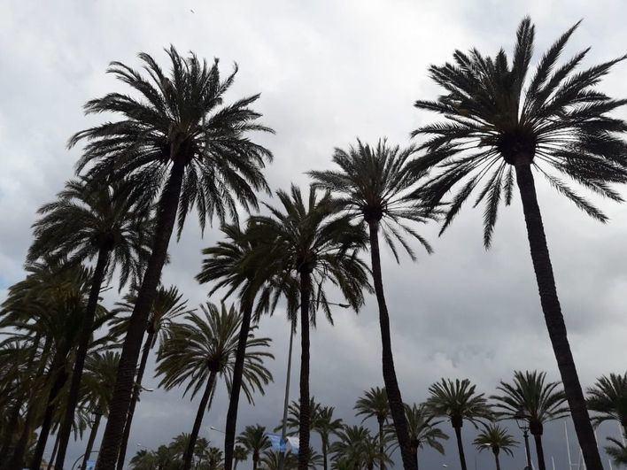 Miércoles con nubes, bajada de temperaturas y lluvias ocasionales