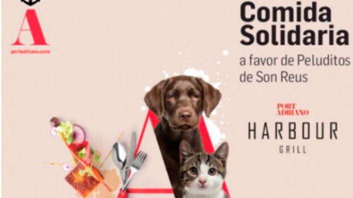 Comida solidaria de Peluditos de Son Reus y Harbour Grill a favor de animales abandonados