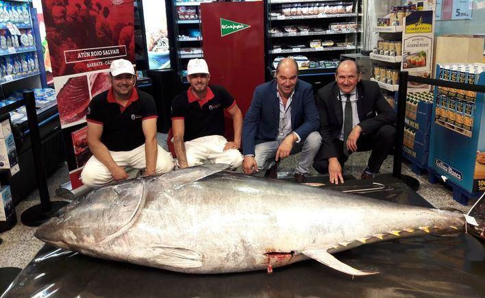 El ronqueo del atún, todo un espectáculo en El Corte Inglés de Avenidas