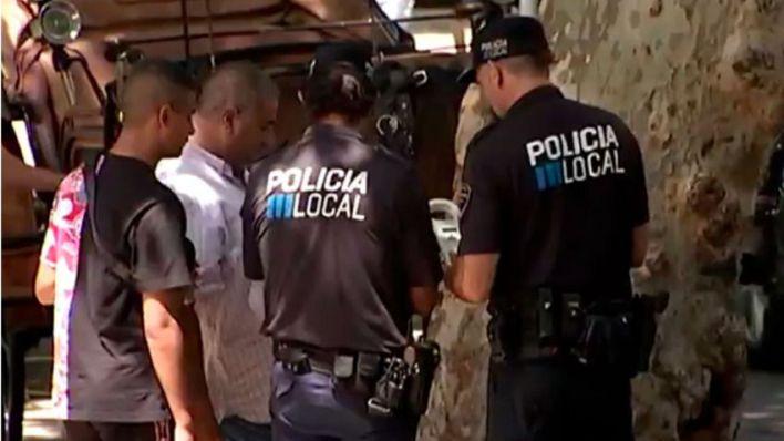 La Policía denuncia a siete conductores de galera por hacer trabajar a los caballos en plena ola de calor