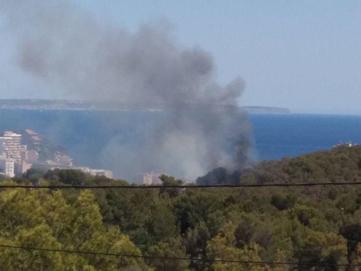 Alarma vecinal por un incendio en el bosque de Cala Major