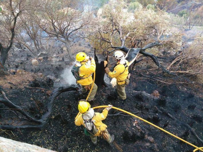 Controlado el incendio forestal en Solleric