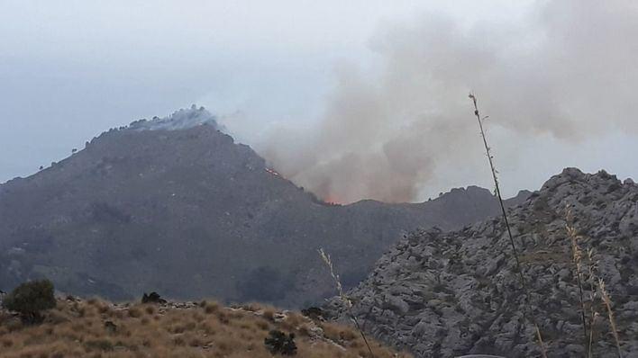 Extinguido el incendio forestal de Andratx y controlado el de Cala Tuent