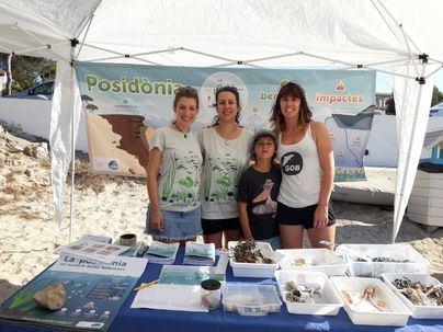 El GOB instala carpas en cuatro playas de Mallorca para sensibilizar sobre la posidonia