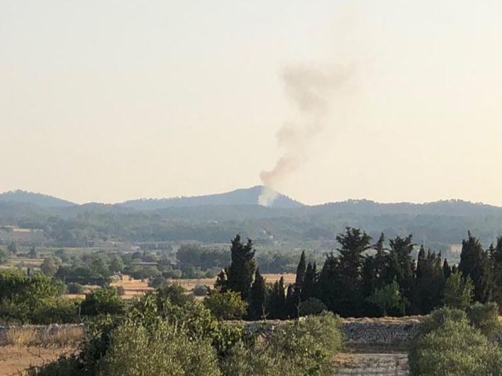 Controlado un incendio forestal en Algaida que ha quemado 0,1 hectáreas de pinar