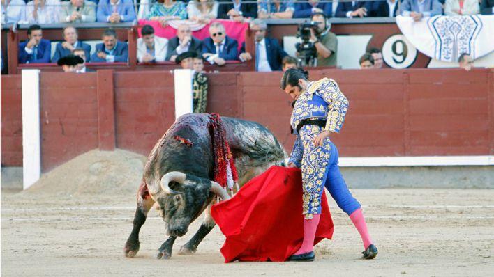 El 56 por ciento de los lectores están en contra de la vuelta de los toros a Mallorca