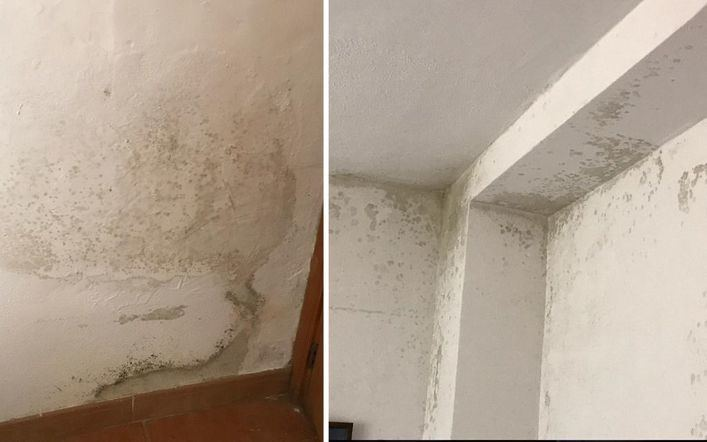 Alaró resuelve las deficiencias de una vivienda tutelada con serias manchas de humedad