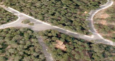 Calvià multa con más de 63.000 euros a los responsables de la tala de 24 pinos en Cala Vinyes