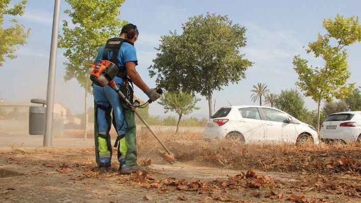 Cort erradica malas hierbas en 90 kilómetros de aceras de seis barrios de Palma