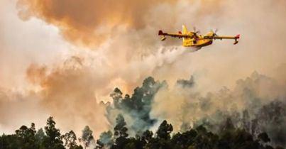 El incendio de Gran Canaria avanza imparable y ya son 8.000 los evacuados