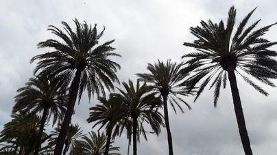 Martes nuboso y con posibilidad de lluvias en Baleares