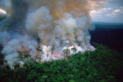 Bolsonaro culpa a las ONG de los incendios en el Amazonas