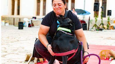 Perros y gatos, protagonistas de un desfile en Inca para encontrar nuevo hogar